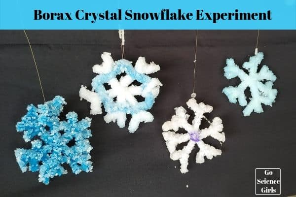 Borax Crystal Snowflakes Science Experiment For Kids