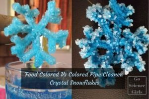 food colored vs colored pipe cleaner crystal snowflakes
