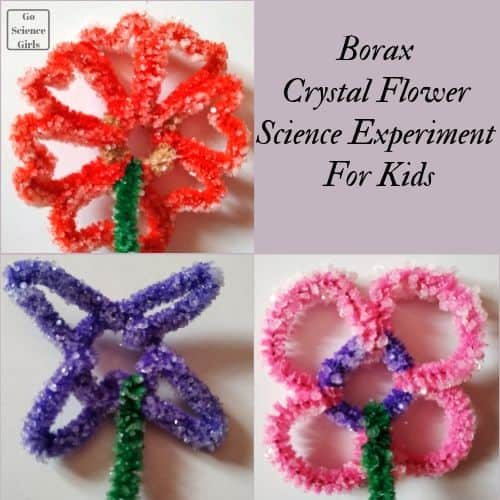 Crystal flowers made from red, green, purple, and pink pipe cleaner, and borax powder, and water.