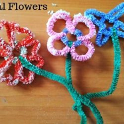 DIY Borax Crystal Flowers