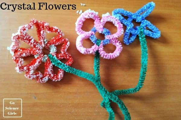Crystal Flowers For Kids Go Science Girls