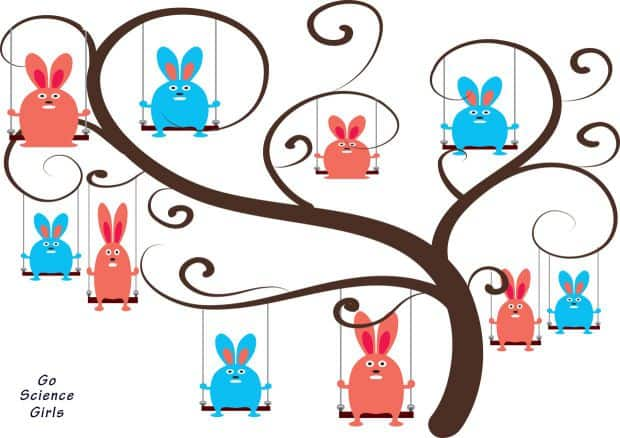 Family Tree Templates For School Projects