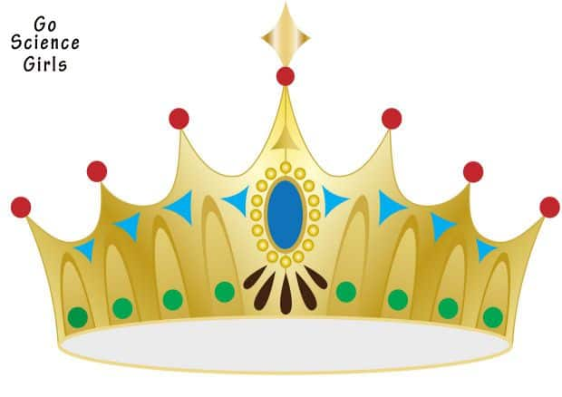 crown template for headband