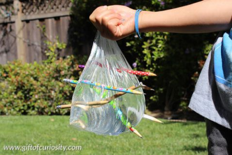 The Leak Proof Plastic Bag: A kid-friendly science lesson about polymers