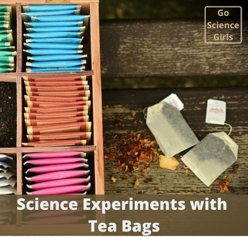 Science Experiments With Tea Bags