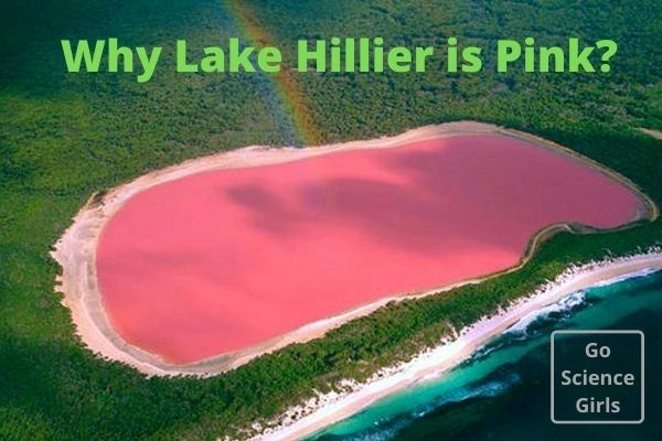 Why Lake Hiller is Pink