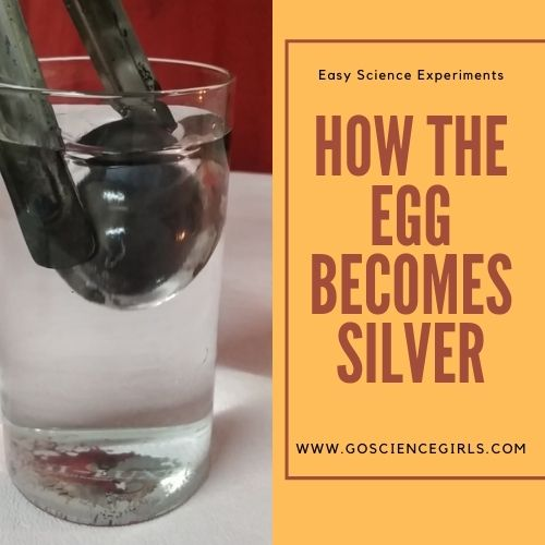 How The Egg Becomes Silver