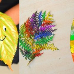 Exploring Veins Patterns in Leaves – Kids Painting Activity