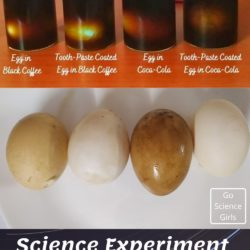 Egg and Toothpaste Experiment (Learn Importance of Brushing Your Teeth)