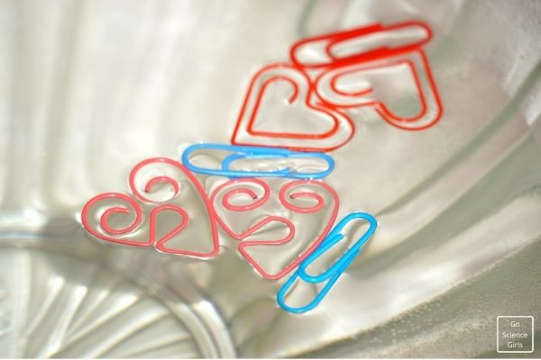 Floating Paper Clip Experiment