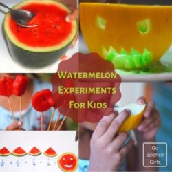 Cool Watermelon Science Experiments for Kids