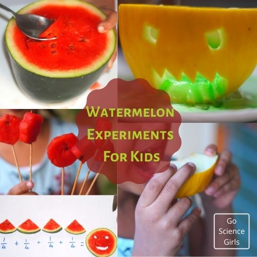Watermelon Experiments For Kids
