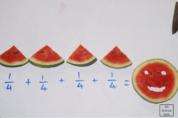 Watermelon Fraction Experiments