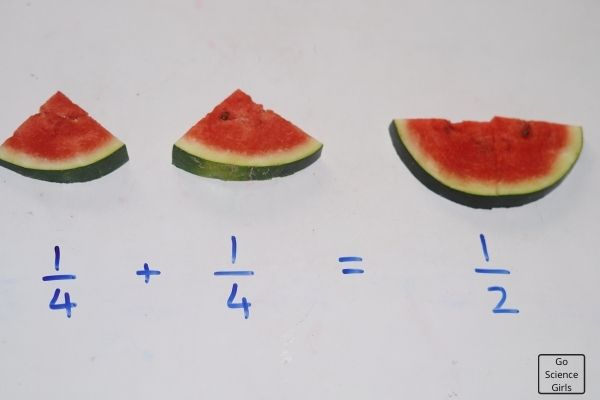 Watermelon Fraction Experiments For Kids