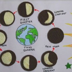 Oreo Cookie Moon Phases Activity
