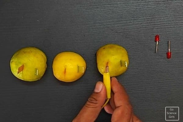 Insert Copper And Zinc Strips To Lemon