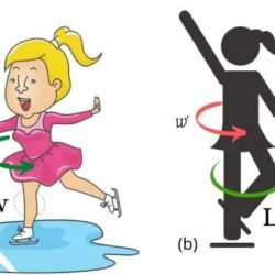 Science of Ice Skating (Physics Concepts of Ice Skating)