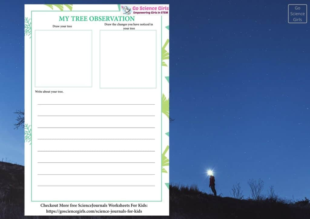 science journal tree observation